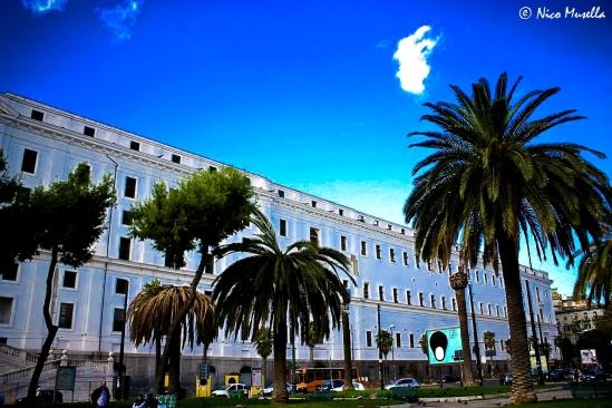 real albergo dei poveri (3)