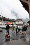 natura luoghi e persone nel sud della francia (19)