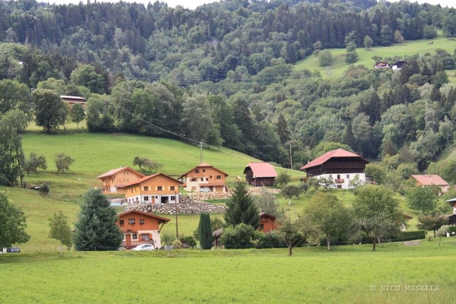 Natura luoghi e persone nel sud della francia (25)