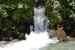 natura luoghi e persone nel sud della francia (31)